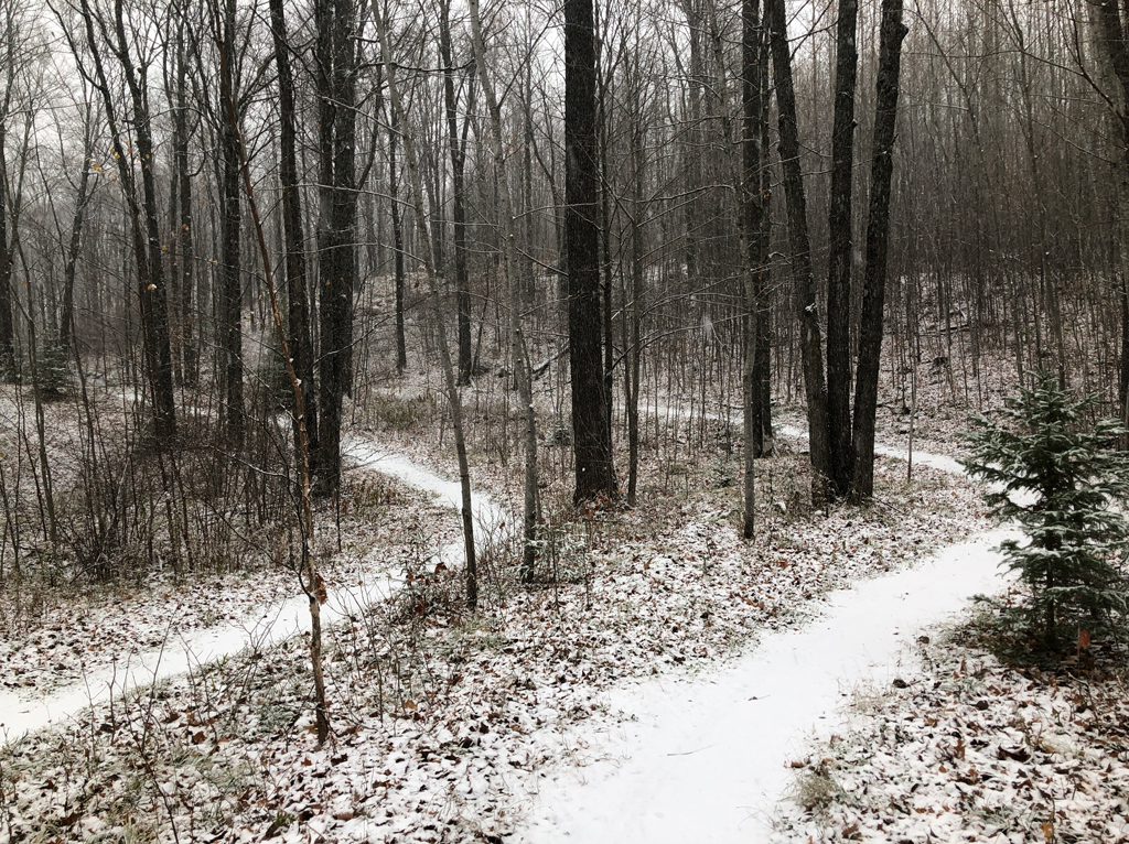 The snow-covered Twins trail at WinMan